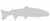 Steelheadbum: Spey Page